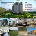 1 2 3 bhk flat house office shop godown for rent and resale